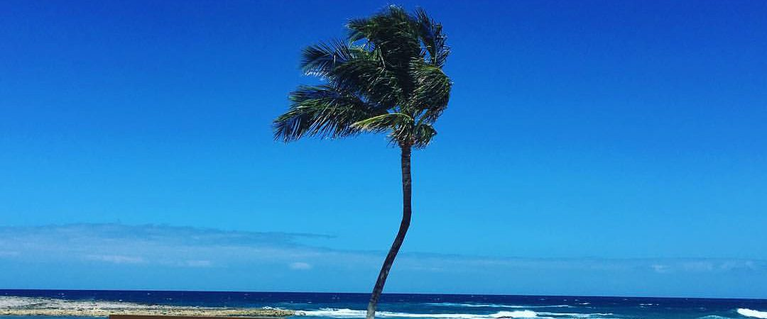 cropped-bahamas2.jpg